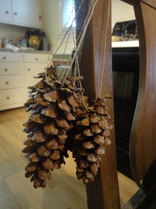 Tied pinecone bunch