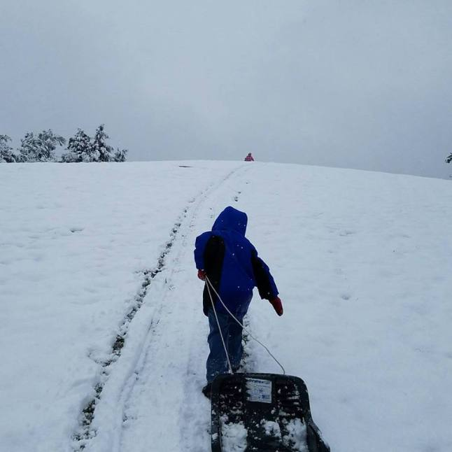 snow sledding 2017